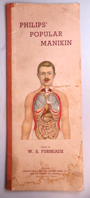 Philips' Popular Mannikin, or Model of the Human Body. An illustrated representation with full and descriptive letterpress. William S. FURNEAUX.