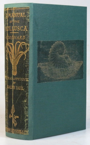 A Manual of the Mollusca. Being a treatise on recent and fossil shells. With an appendix of... conchological discoveries by Ralph Tate. Illustrated by A.N. Waterhouse and Joseph Wilson Lowry. S. P. WOODWARD.