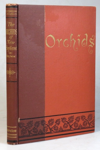 The Orchids of New England. A Popular Monograph. Henry BALDWIN.