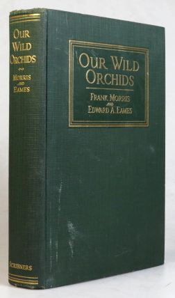 Our Wild Orchids. With foreword by Oakes Ames. Frank MORRIS, Edward A. EAMES.