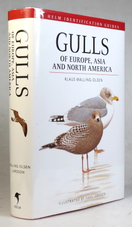 Gulls of Europe, Asia and North America. Illustrated by Hans Larsson. Klaus Malling OLSEN.