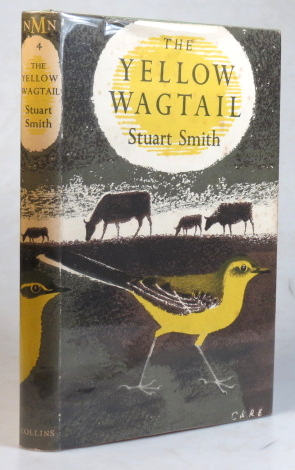 The Yellow Wagtail. Stuart SMITH.