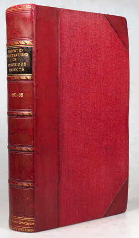 Report of Observations of Injurious Insects, and Common Farm Pests during the year[s] 1891-93... Fifteenth - Seventeenth Report[s]. [bound with] Observations on Warble Fly or Ox Bot Fly. An Abstract of Information. Eleanor A. ORMEROD.