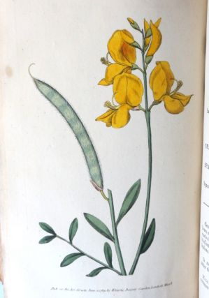 The Botanical Magazine; or Flower-Garden Displayed: in which the Most Ornamental Foreign Plants, Cultivated in the Open Ground, the Green-House, and the Stove, are Accurately Represented in their Natural Colours. To which are Added their Names, Class, Order, Generic and Specific Characters, According to the Celebrated Linnæus; their Places of Growth, and Times of Flowering: Together with the Most Approved Methods of Culture. A Work Intended for the Use of such Ladies, Gentlemen, and Gardeners, as wish to Become Scientifically Acquainted with the Plants they Cultivate.