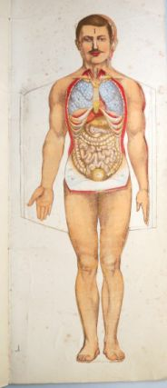 Philips' Popular Mannikin, or Model of the Human Body. An illustrated representation with full and descriptive letterpress.