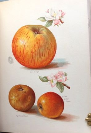 The Fruit Grower's Guide. With illustrations by Miss May Rivers.